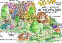 show garden sketch
