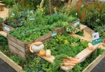 vegetable display garden
