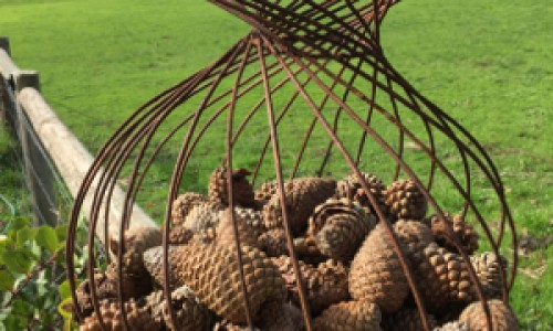 wire basket with pinecones