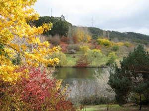 mt loft gardens with lake