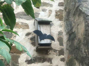 bat box on stone wall