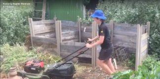 boy mowing mulch