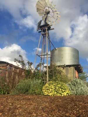 mulch and windmill