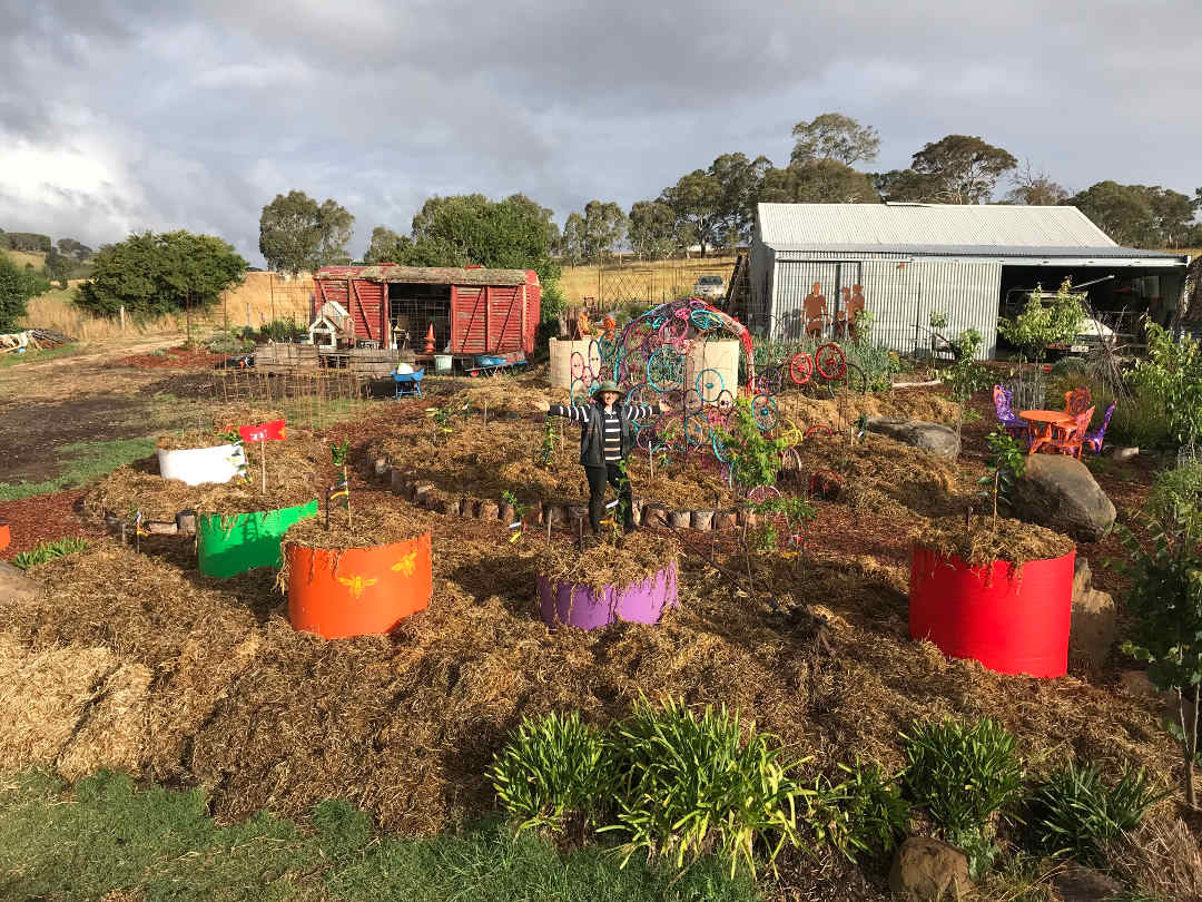 Planting the citrus grove | Sophies Patch - Sophie Thomson