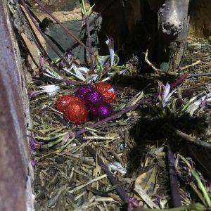 eggs by chimney