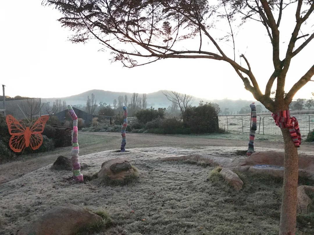 frosty garden