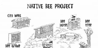 native bee hotel sketch