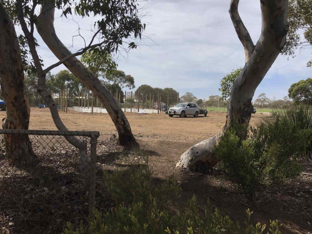 car in paddock