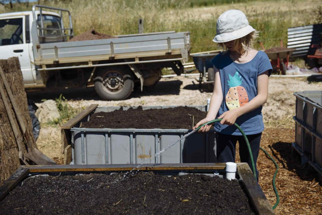planting in wicking bed