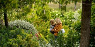 people in garden